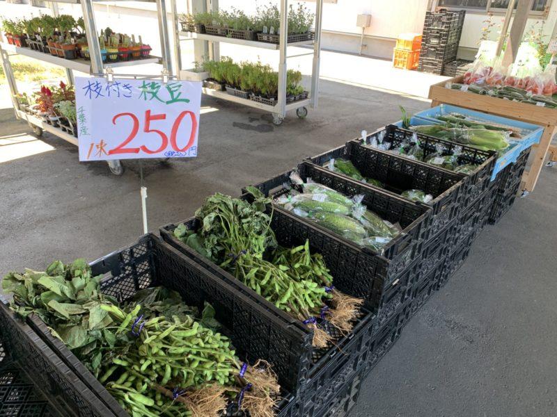 発酵の里こうざき 新鮮市場 枝付き枝豆 お買い得!