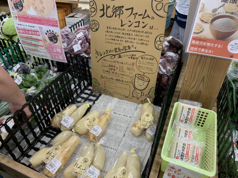 発酵の里こうざき 新鮮市場  北郷ファーム レンコン